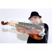 http://thumbnails70.imagebam.com/18294/7ec4b0182931717.jpg