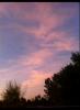 BTKAPP... puesta de sol en Los Ángeles 0cd32e186258157