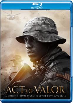 Act of Valor 2012 m720p BluRay x264-BiRD